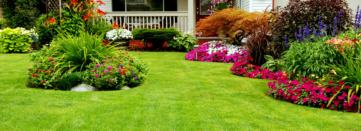 Landscaping Contractor Tree Amp Lawn Care Serving