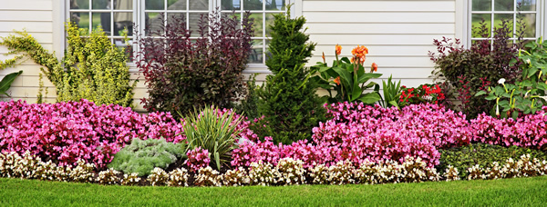 Landscaper Serving Rockford, IL – Landscape Design – Lawn Maintenance - Rockford, IL Landscaper – Tree Lawn Care Inc.