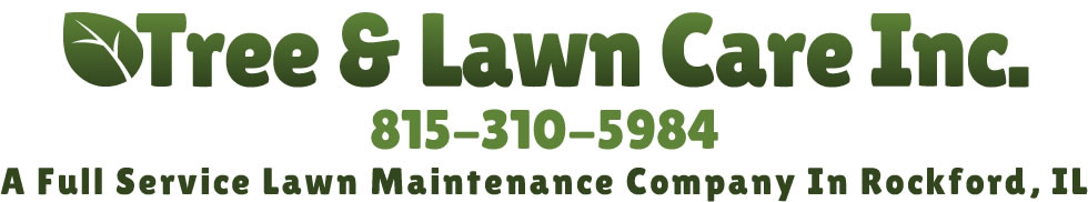 Tree Lawn Care Co.